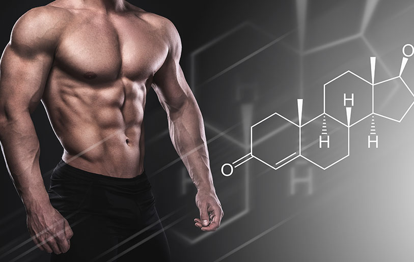 Best Testosterone Booster For Muscle Gain