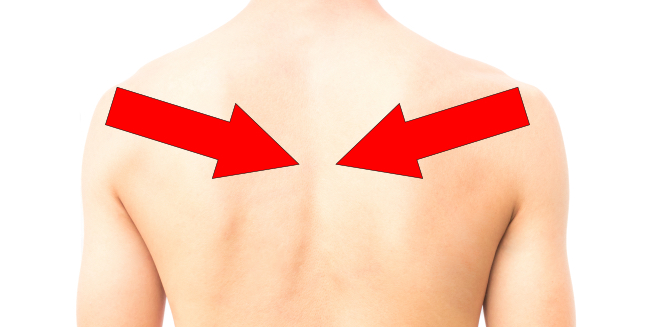 Scapular Retraction Exercises 5 Easy Simple Exercises