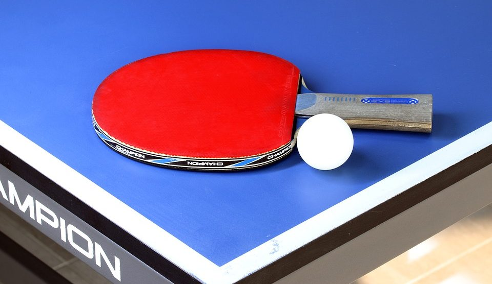 Best Ping Pong Paddles Review Top 10 Picks