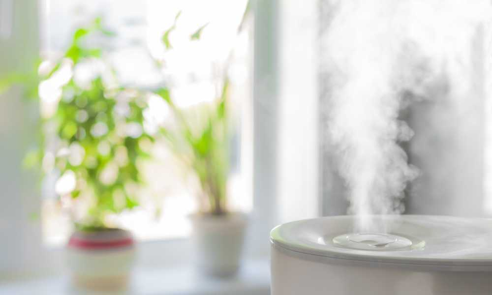 Best Whole House Steam Humidifier Buying Guide