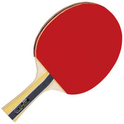 Butterfly 603 - Best Ping Pong Paddles Review Top 10 Picks