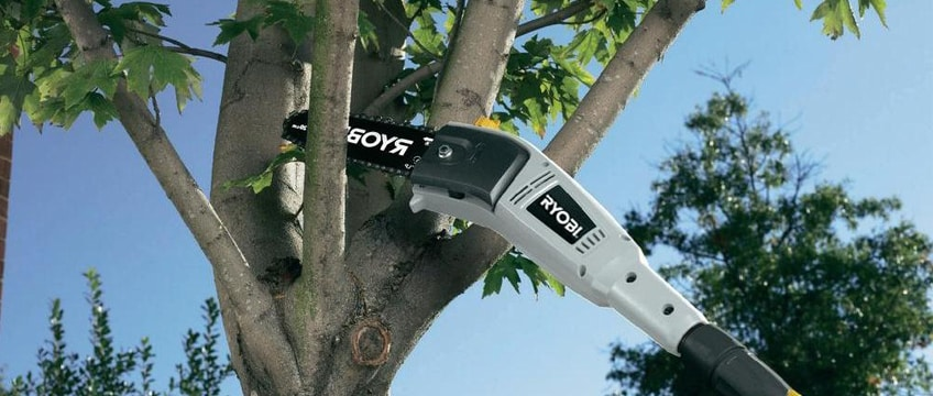 Best Electric Saw to Cut Tree Branches Review & Buying Guide