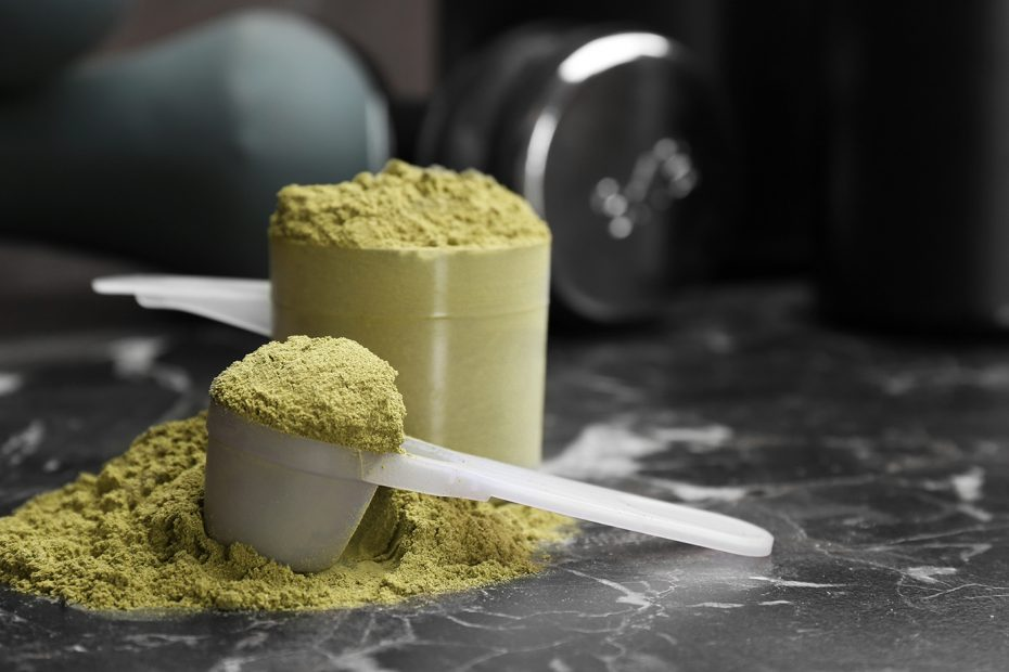 Best Plant Based Protein Powder for Weight Loss Review