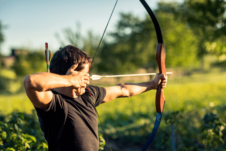 Best Recurve Bow for Beginners Review & Buying Guide