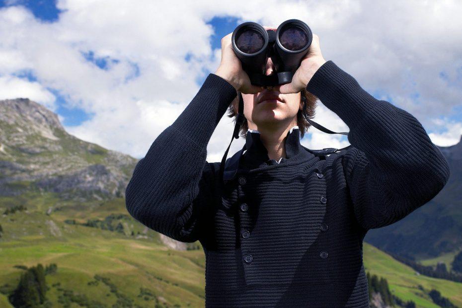Best Compact Binoculars for Bird Watching Review
